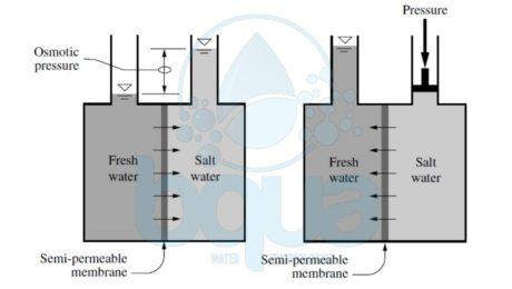 reverse osmosis definition meaning example